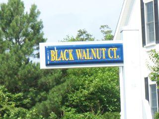 Black Walnut Court
